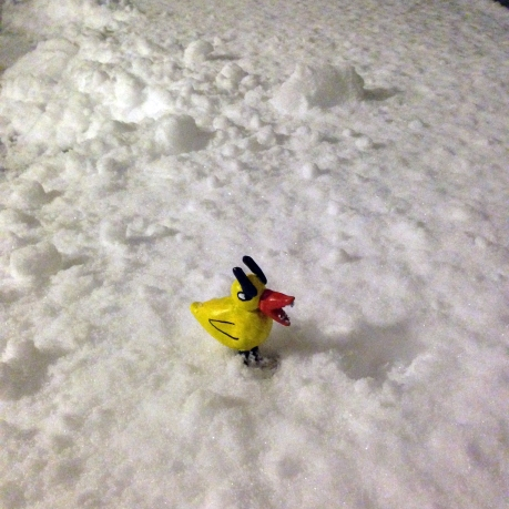 Angry Duck in snow
